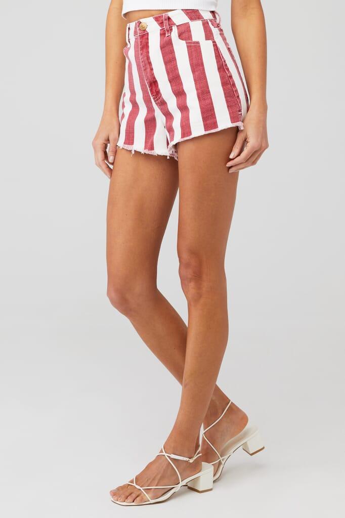Show Me Your Mumu Arizona High Waisted Shorts in Candy Stripe