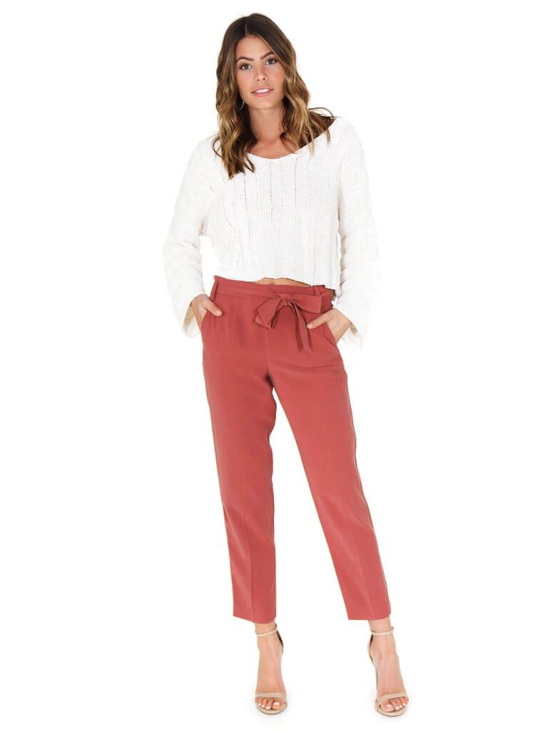 1.STATE Flat Front Tie Waist Slim Pants in Terra Earth