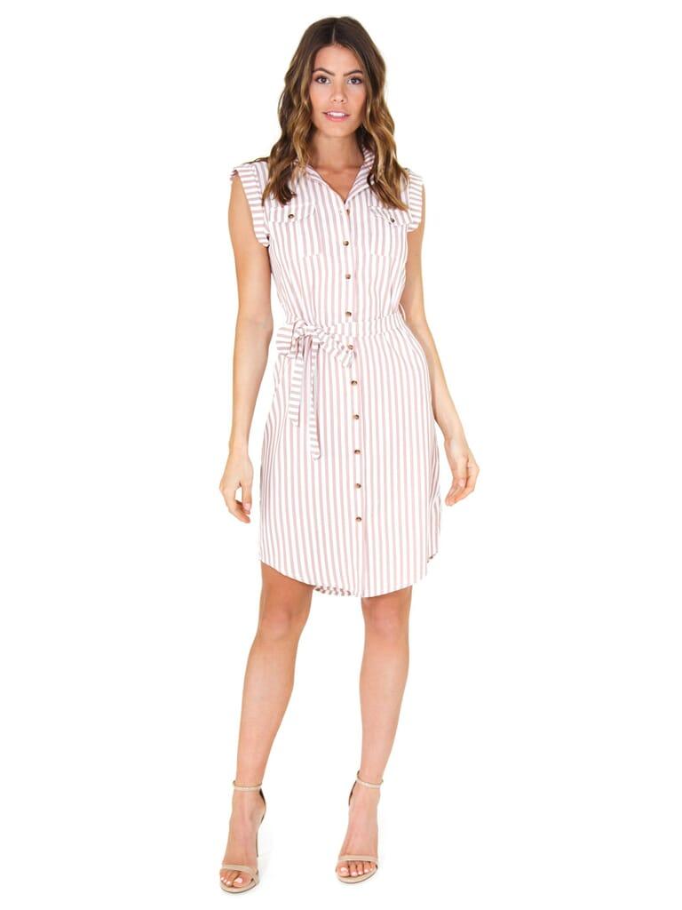 Bishop + Young Stripe Shirtdress in Rose Stripe